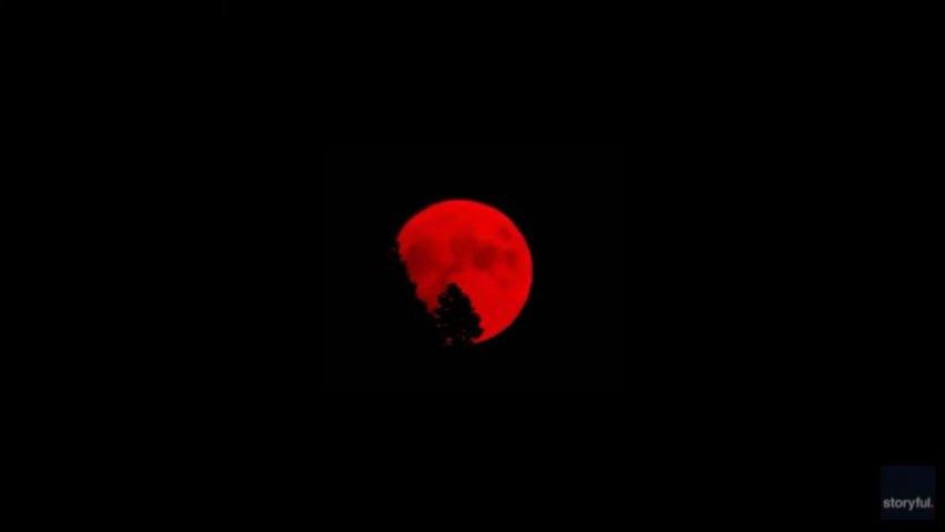В Калифорнии взошла кровавая Луна: в Сети появилось жуткое видео