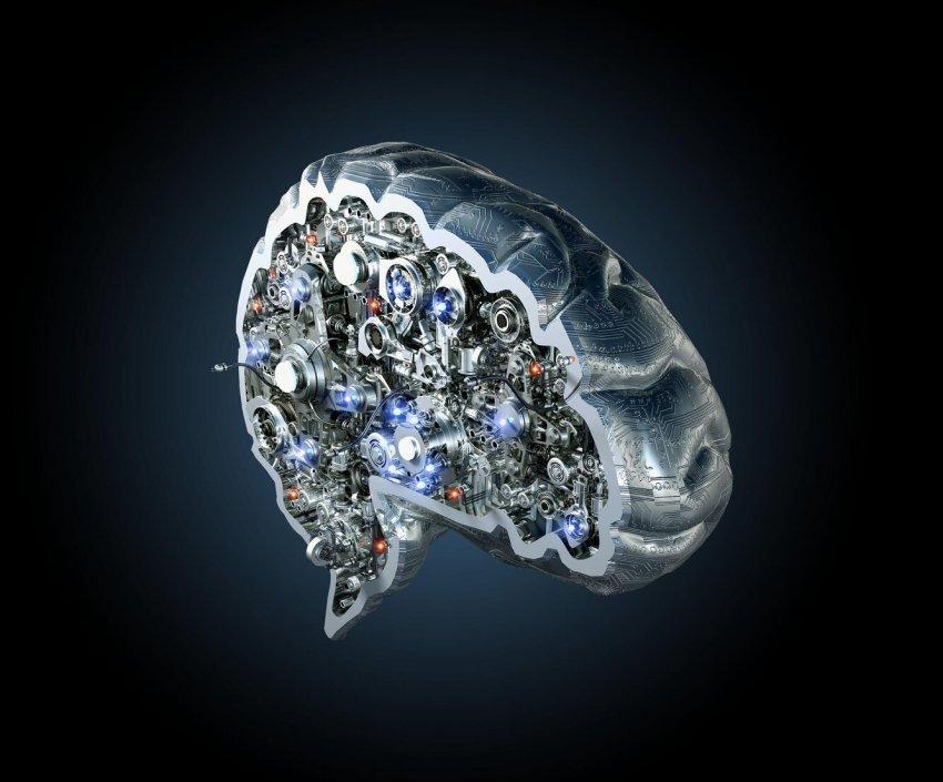 Как современная официальная наука исследует мозг?