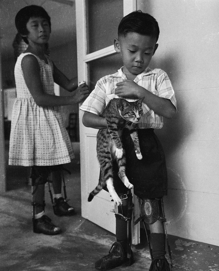 Как СССР помогал вакцинировать японцев