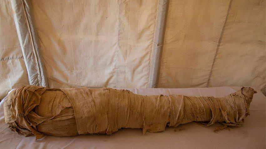 Десятки саркофагов и супруга фараона, или Что раскопали в египетском некрополе