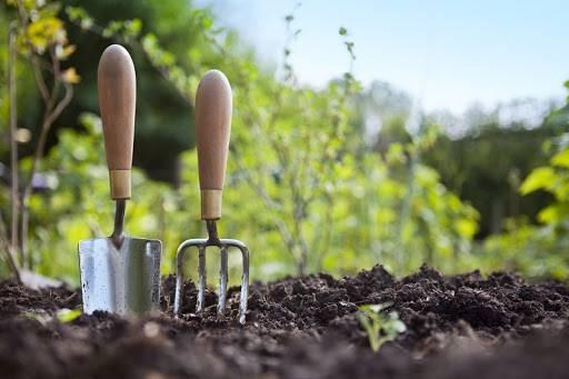 Какие работы нужно проделать в апреле в саду и огороде