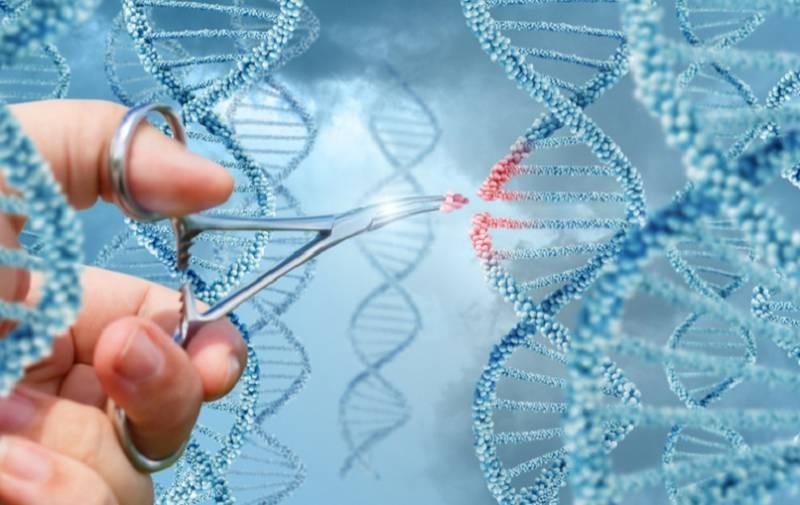 В ходе масштабных исследований ученые обнаружили основной фактор, который влияет на долголетие