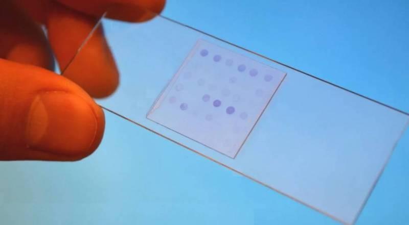 В Петербурге учёные «поручат» поиск недиагностированных болезней биочипам