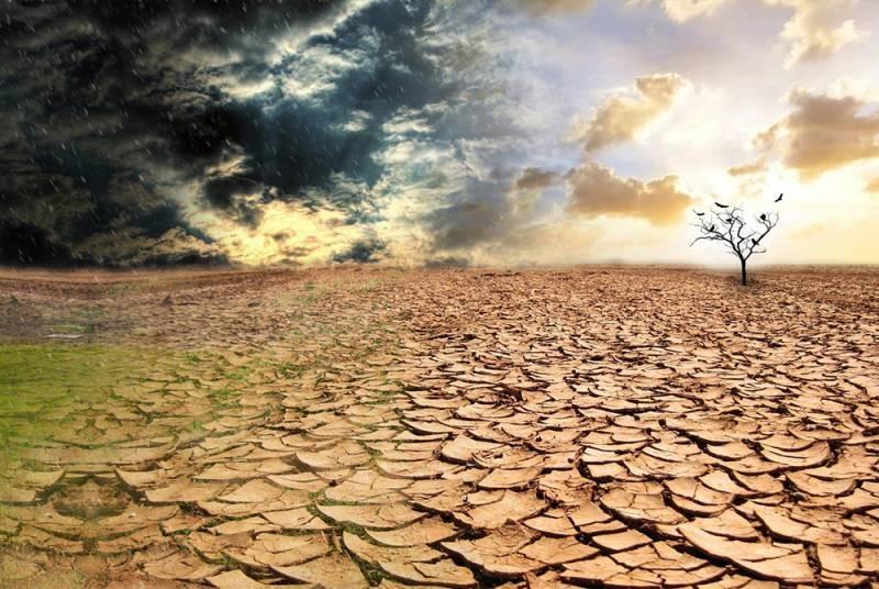 Тревожные прогнозы метеорологов для сельхозпроизводителей России