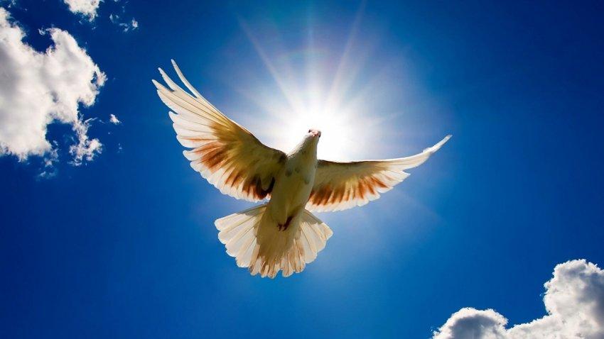 Как правильно просить о помощи на праздник Благовещение Пресвятой Богородицы