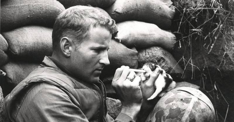 Знаменитый фотоснимок спас солдата, который запечатлен на нем в момент кормления из пипетки котенка, оставшегося без мамы