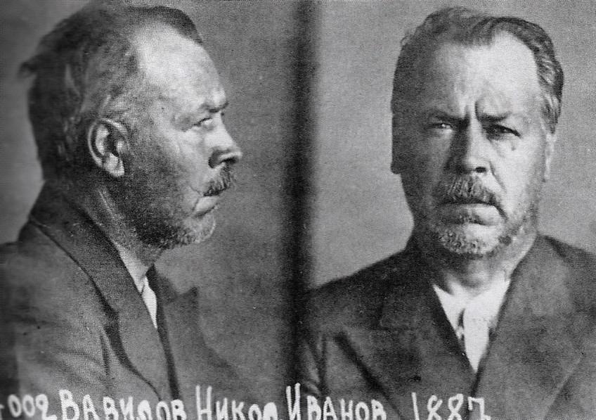 О чём забывают ностальгирующие по СССР