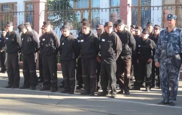 В РФ предложили вскоре провести уголовную амнистию