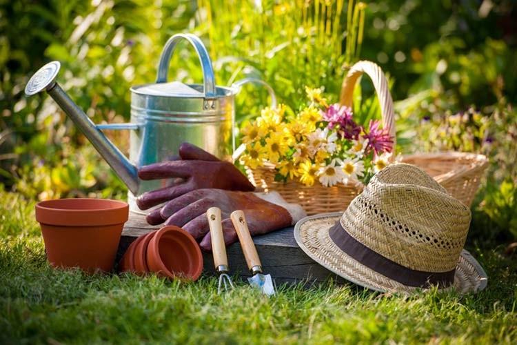 Можно ли в Вознесение работать в огороде, ответили священнослужители