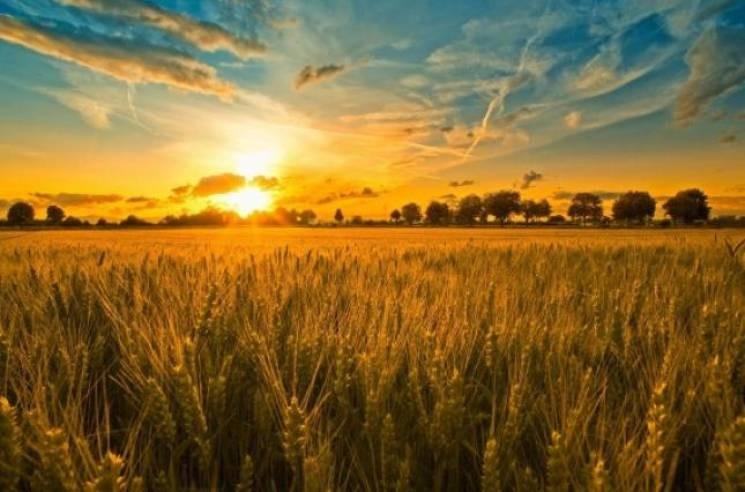 День летнего солнцестояния: Лита отмечается 20 — 21 июня