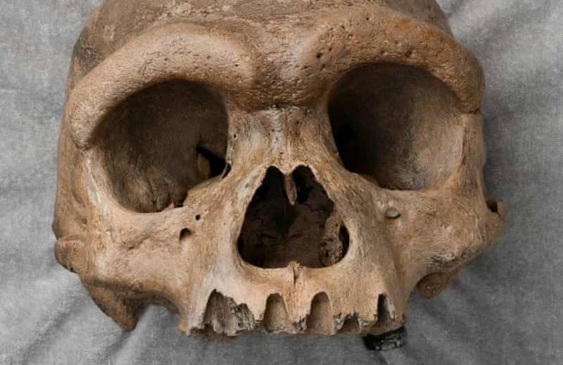 В Китае найден череп, принадлежащий человеку-дракону