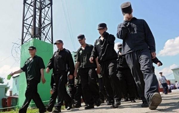 Вопрос о проведении уголовной амнистии остается актуальным среди россиян