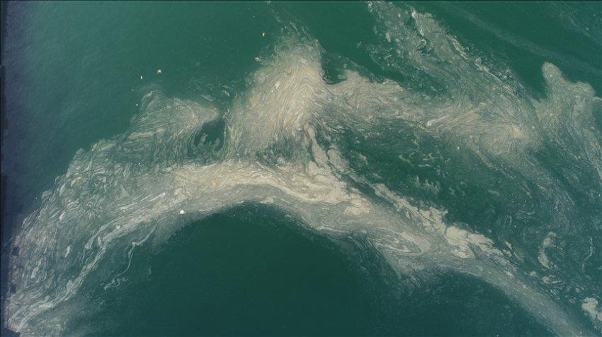 Мраморное море покрылось «слизью» у побережья Турции