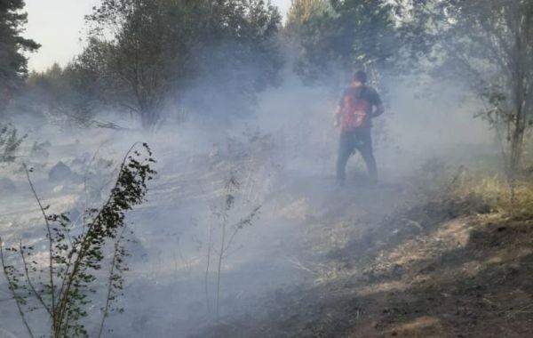 Площадь лесных пожаров в Чувашии стремительно возрастает